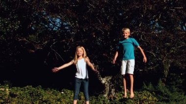 Brother and sister jumping on a trampoline — Stock Video