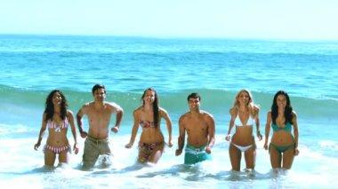 Plajda eğlenmek arkadaş grubu — Stok video