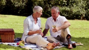 Elderly couple drinking white wine at a picnic — Stock Video