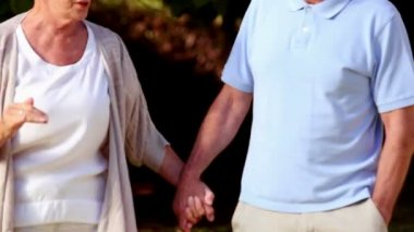 Mature couple walking hand in hand — Stock Video