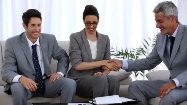 Group of business shaking hands — Stock Video