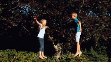 Cheerful siblings having fun on a trampoline — Stock Video