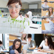 Collage of teacher and students — Stock Photo #28056525