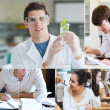Stock Photo: Collage of students doing chemistry
