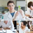 Collage of students doing chemistry — Stock Photo