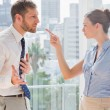 Stock Photo: Business partners having heated argument