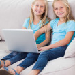 Cute twins using a laptop together — Stock Photo