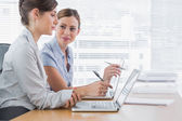 Young businesswomen working together on their laptops — Stock Photo