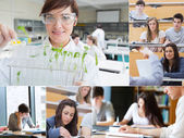 Collage of teacher and students — Stock Photo