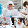 Montage with students doing chemistry — Stock Photo