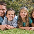 Stock Photo: Smiling family lying on the grass