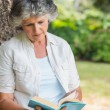 Cheerful mature woman reading book sitting on tree trunk — Stock Photo