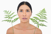 Sensual dark haired model with fern looking up — Stock Photo
