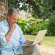 Retired man leaning against tree with a laptop — Stock Photo #29451999