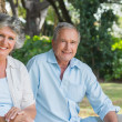 Stock Photo: Happy mature couple smiling and looking at camera