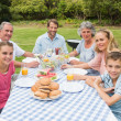 Cheerful extended family having dinner outdoors at picnic table — Stock Photo #29453633
