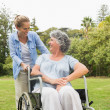 Happy mature woman in wheelchair talking with daughter — Foto Stock