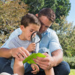 Stock Photo: Smiling dad and son inspecting leaf with magnifying glass