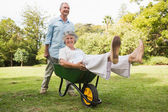 Happy man pushing his laughing wife in a wheelbarrow — Stock Photo