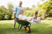 Cheerful man pushing his wife in a wheelbarrow — Stock Photo