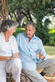 Улыбаясь Пожилая пара говорить вместе с деревом — Стоковое фото