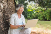 Happy grey haired woman with a laptop sitting on tree — Stock Photo