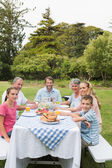 Multi generation family at picnic table having dinner outside — Stock Photo