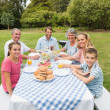 Happy extended family having dinner outdoors at picnic table — Stock Photo #29460073
