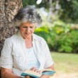 Cheerful mature woman reading book leaning on tree trunk — Stock Photo