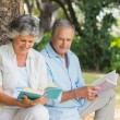 Mature couple reading books together sitting on tree trunk — Stock Photo