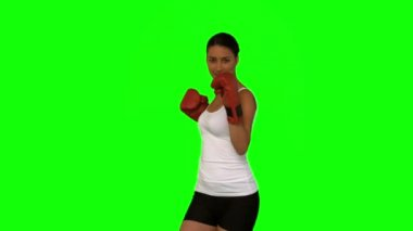 Attractive woman boxing — Stock Video