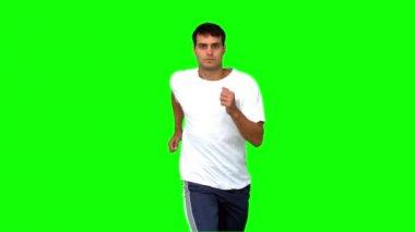 Красавец, бег на зеленом экране — Стоковое видео