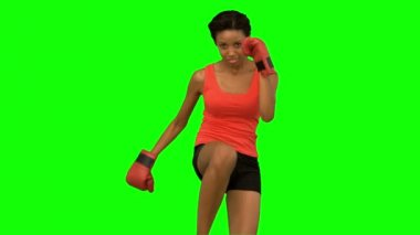 Woman performing high kick on green screen — Stock Video