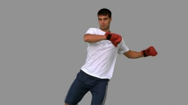 Boxer performing a high kick on grey screen — Stock Video