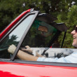 Smiling handsome man driving red convertible — Stock Photo #31461489