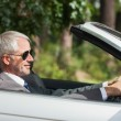 Постер, плакат: Relaxed businessman driving classy cabriolet