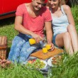 Happy couple sitting on the grass having picnic together — ストック写真