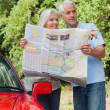 Smiling mature couple reading map looking for direction — Stock Photo #31468421