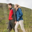 Cheerful couple walking through the countryside — Stock Photo