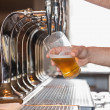 Stock Photo: Bartender pulling pint of beer