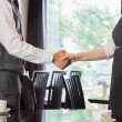 Business people shaking hands — Foto Stock #31473961