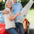 Happy mature couple reading map together — Stock Photo #31477653