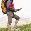 Handsome hiker with rucksack walking uphill holding a map — Stock Photo #31477737