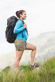 Escursionista attraente con zaino, camminando in salita — Foto Stock