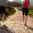 Fit couple jogging together in the countryside away from camera — Stock Video