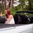 Stock Video: Woman kissing her boyfriend in a convertible car