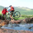 Couple crossing a stream together with their bikes — Stock Video