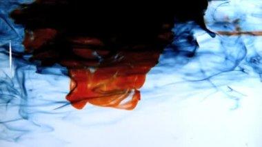 Modrý a červený inkoust, která se do vody na bílém pozadí — Stock video
