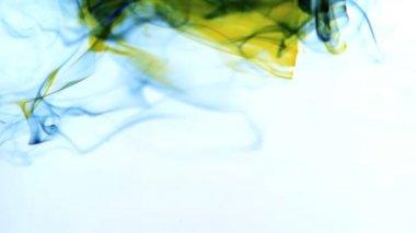 Tinta amarela e azul, rodopiando em água no fundo branco — Vídeo Stock