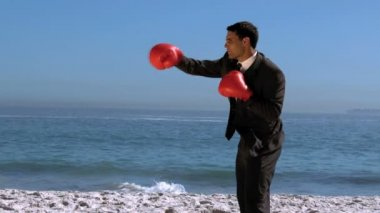 Handsome businessman boxing on the beach — Stock Video